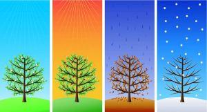four-seasons-521187